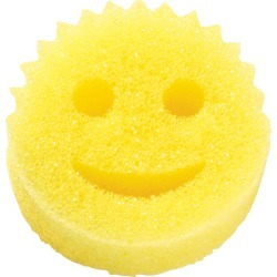 Scratch Free Scrub Daddy