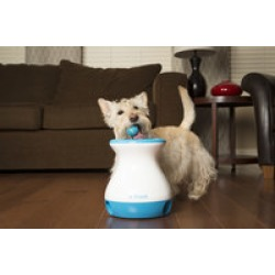 iFetch W-100 Frenzy Interactive Brain Game for Small Dogs found on Bargain Bro India from Crutchfield for $29.99