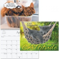 2017 CATtitude Wall Calendar found on Bargain Bro Philippines from currentcatalog.com for $7.49