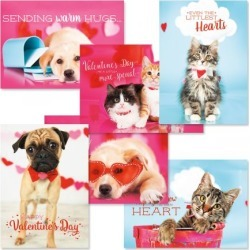 Valentines Day Pets Cards found on Bargain Bro Philippines from currentcatalog.com for $7.49