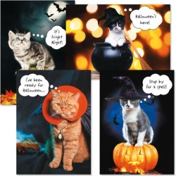 CATtitude Halloween Cards