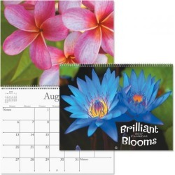 2017 Brilliant Blooms Calendar found on Bargain Bro India from currentcatalog.com for $7.49