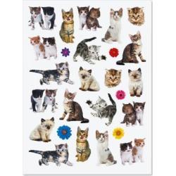 Kittens Stickers