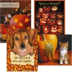 Photo Fun Halloween Cards