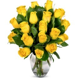 One Dozen Yellow Roses found on Bargain Bro India from Flora2000 for $167.99