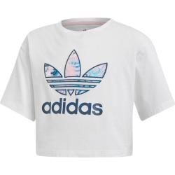 adidas Graphic T-Shirts