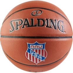 Spalding Team Precision Advanced AAU Basketball