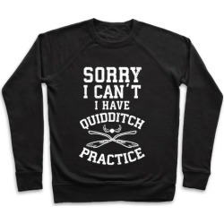 Sorry, I Can't, I Have Quidditch Practice Pullover from LookHUMAN