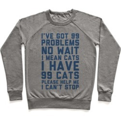 I Have 99 Cats Pullover from LookHUMAN