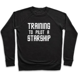 Training To Pilot A Starship Pullover from LookHUMAN