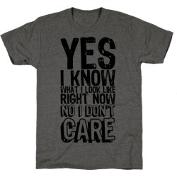 Yes, I Know What I Look Like Right Now No I Don't Care T-Shirt from LookHUMAN found on Bargain Bro from LookHUMAN for USD $19.75