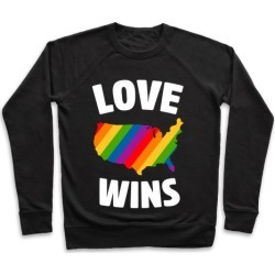Love Wins Pullover from LookHUMAN