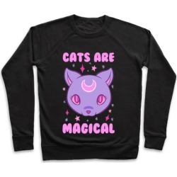 Cats Are Magical Pullover from LookHUMAN