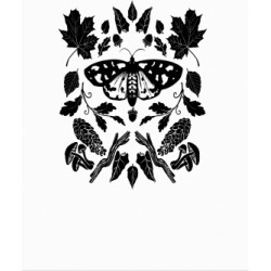 Woodland Moth Poster from LookHUMAN
