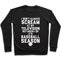 Baseball Season Pullover from LookHUMAN