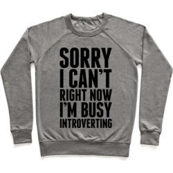 Sorry I Can't Right Now I'm Busy Introverting Pullover from LookHUMAN found on Bargain Bro Philippines from LookHUMAN for $34.99