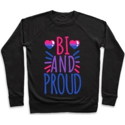 Bi And Proud Pullover from LookHUMAN