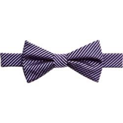 Egara Purple Stripe Bow Tie