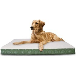 FurHaven Pet Dog Bed | Deluxe Orthopedic Faux Sheepskin & Flannel Paw Décor Print Pet Bed Mattress Pet Bed for Dogs & Cats, Jade Green, Jumbo found on Bargain Bro from  for $46.99