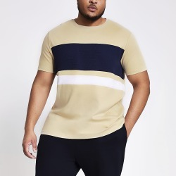 River Island Mens Big and Tall beige colour blocked T-shirt