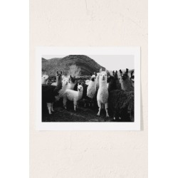 Victoria Aguirre Llamas Family Art Print found on Bargain Bro Philippines from Urban Outfitters (US) for $29.00