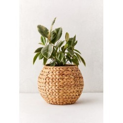 Wyn Woven Planter Basket - Beige at Urban Outfitters found on Bargain Bro India from Urban Outfitters (US) for $29.00