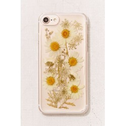 Oops-A-Daisy iPhone 8/7/6/6s Case - Clear at Urban Outfitters