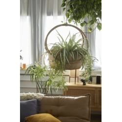 Margot Hanging Planter - Beige S at Urban Outfitters