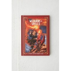 Wizards & Spells (Dungeons & Dragons): A Young Adventurer's Guide By Jim Zub, Stacy King & Andrew Wheeler