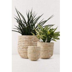 Dia Natural Basket Planter - Beige S at Urban Outfitters