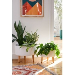Parkview Planter - White S at Urban Outfitters