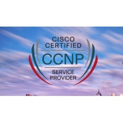 350-501 -CCNP Service Provider (SPCOR)-Latest Practice Tests found on Bargain Bro UK from Udemy