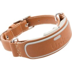 LINK AKC - Smart Dog Classic Leather Collar (Medium) found on Bargain Bro India from Best Buy for $103.99