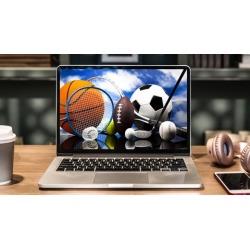 3 Online Business / Side Hustle Ideas For Sports Fans