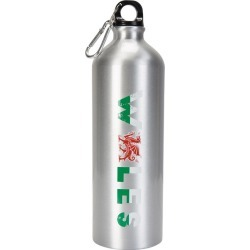 1L Wales Metallic Bottle With Karabiner - Silver found on Bargain Bro UK from Mountain Warehouse