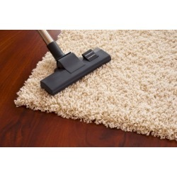 $88 for $175 Worth of Rug and Carpet Cleaning - Niki's Cleaning...