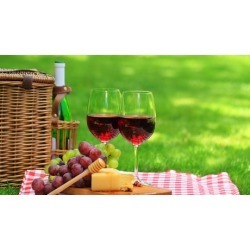 Fall Wine Tasting and Food Pairing, With Wine Education