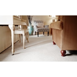 $36 for $65 Worth of Rug and Carpet Cleaning - Dun Rite Carpet Cleaning