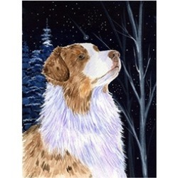 Carolines Treasures SS8375CHF Starry Night Australian Shepherd Canvas