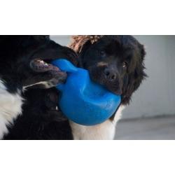 Gripper Ball Dog Toys
