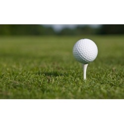 $125 for $250 Worth of Products - Excel Enjoy Golf Academy