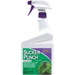 Bonide Products Inc P-Sucker Punch Ready To Use 32 Ounce