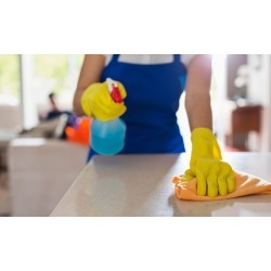 Two or Four Hours of House Cleaning Services from Pilar's Cleaning (Up...