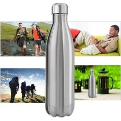 17 oz Insulated Stainless Steel Water Bottle