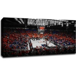 College Basketball Canvas Prints (ToC)