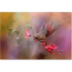 Jai Johnson 'Spring Cardinal 2' Canvas Art