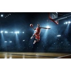 Delaware Blue Hens Basketball Tickets