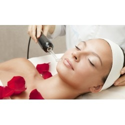One or Two Organic Facials and Microdermabrasion Treatments at Lotus Health & Wellness Center (Up to 56% Off)