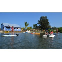 Kayak or Board Rental at Wildlife Water Sports (Up to 42% Off). Six Options Available.