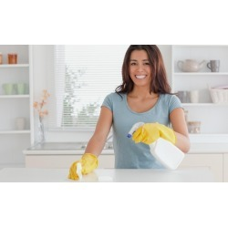 $80 for $150 Worth of Services - Greenville Cleaning Services